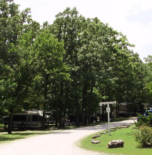 Where are the RV's? Behind the trees!